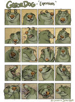 Gator expressions