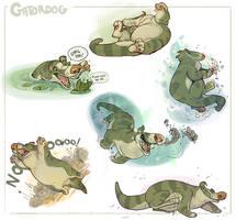Gatorsploosh