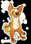 Dingooo