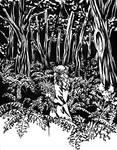 Inktober - 10 Hope [Druid] by AkiaWalker