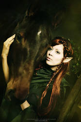 Elf by Ophelia-Overdose