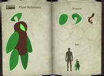 Fallcrest - Summer Mandrake