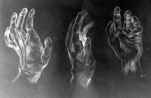 Hand Gallery by LynnWolfe