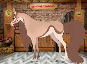 Cinnamon Duchess | Saddle Doe