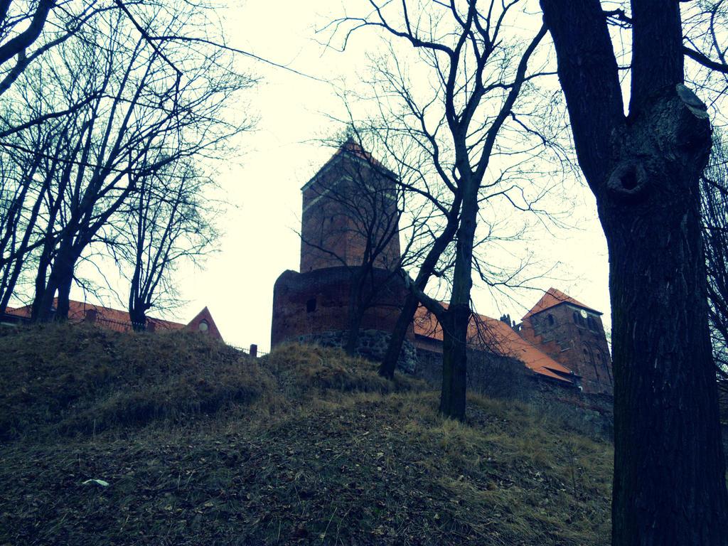 Ketrzyn ~ Castle by malibu-z-mlekiem