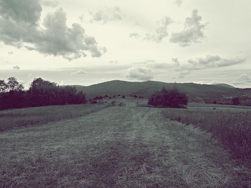 to the springs ~ black and white by malibu-z-mlekiem