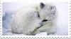 Arctic Fox Stamp by Lunakinesis