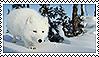 Arctic Fox Stamp II by Lunakinesis