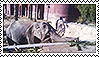 Asian Elephant Stamp by Lunakinesis