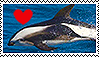 Hourglass Dolphin Stamp by Lunakinesis