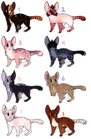 Feline adopts 14 CLOSED by LordEggnog