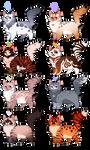 Feline adoptables 15 CLOSED