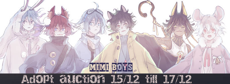 Adopt Auction MiMi boys