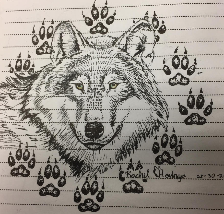 Wolf by SilvaDragoness