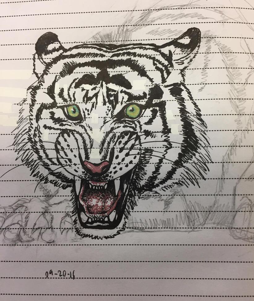 Tiger Snarl by SilvaDragoness