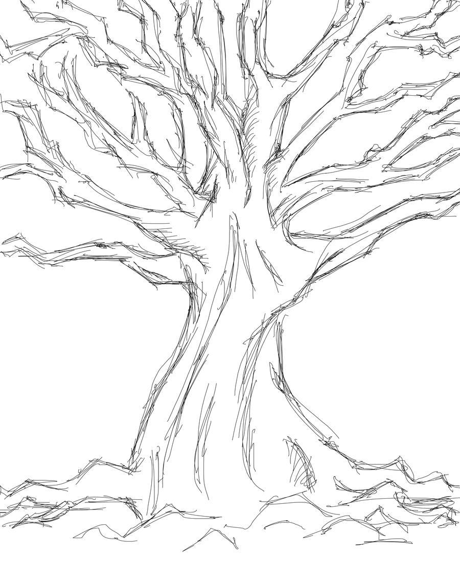 tree sketch 2 by quentinlars tree sketch 2 by quentinlars - Tree Drawings
