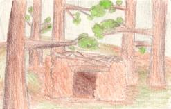 Forest Foundation by AwesomeTikiWiki