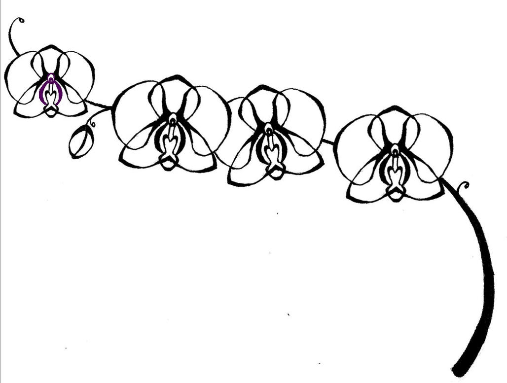 Orchid Flower Line Drawing : Orchid tattoo by a big apple on deviantart