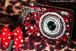 camera deco by CandyStripedCafe