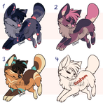 Canine Adopts [Closed]
