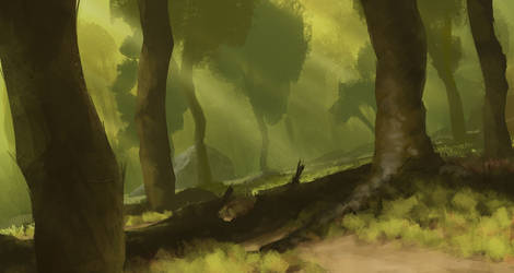 Misty Forest by TomPrante