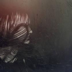 silence. by lydiahansen