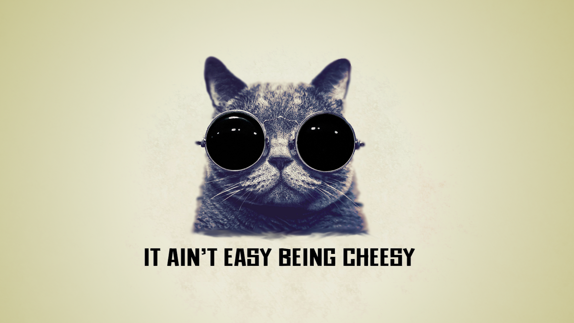 it ain 39 t easy being cheesy cool cat wallpaper by