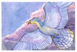 storm bird 1