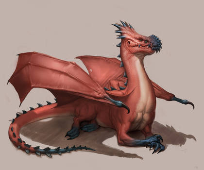 Blue Nosed Dragon