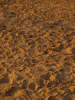 Texture stock 11 beach sand by Finsternis-stock