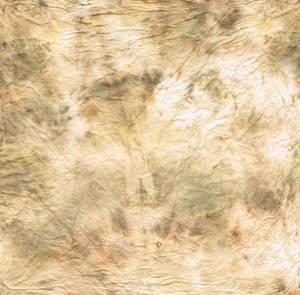 Dirty tissue