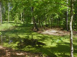 Landscape stock 34 fen by Finsternis-stock