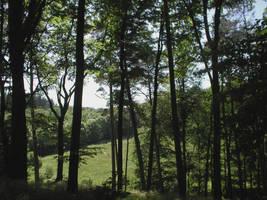 Landscape stock 36 by Finsternis-stock