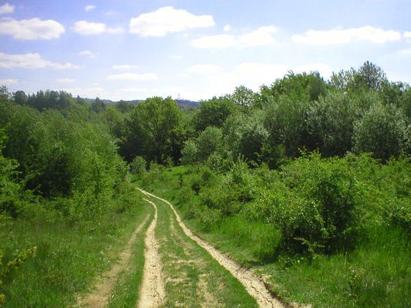 Landscape stock 38 path