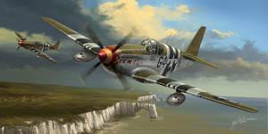P-51 Flying Cadillacs
