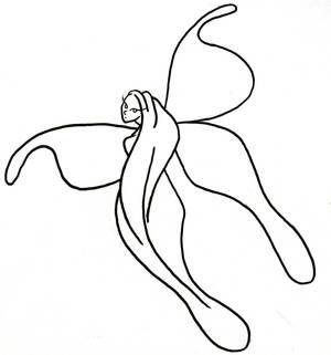 simple fairy outline