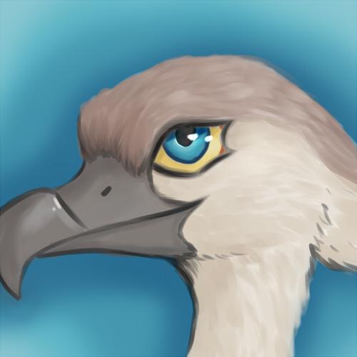 Bird by EchoEternal