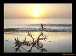 sunrise on ALkhobar city by the-sweet-lemon