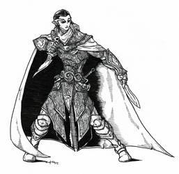 Vax'ildan, Half-Elf Rogue by peachyco