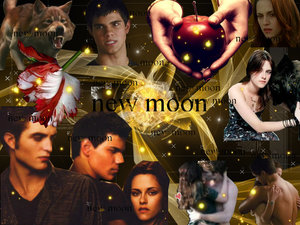 New Moon Wallpaper 5 by New-Moon-Club