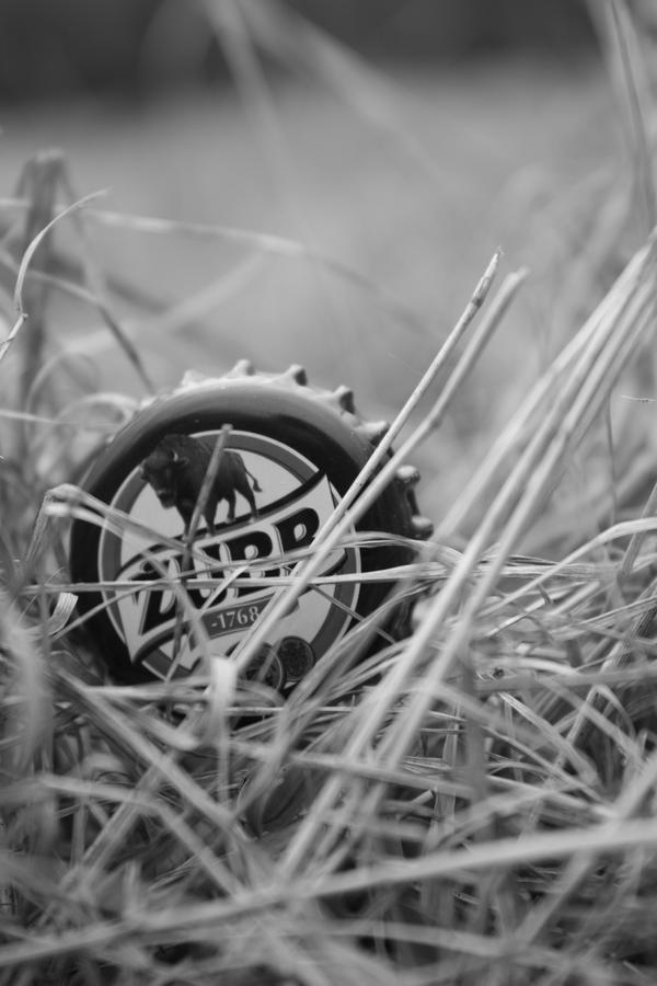 Zubr w trawie puszczy. by Lufon