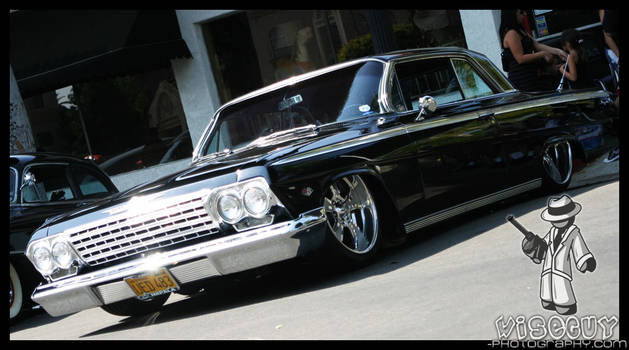 grounded impala