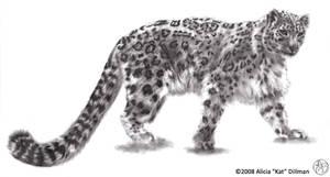 Snow Leopard 2 by KatGirlStudio