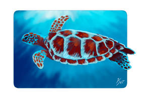 Ripple- Sea Turtle 1 by KatGirlStudio