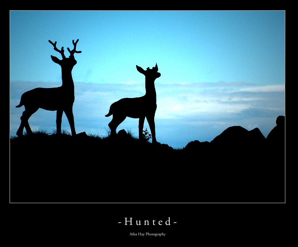Hunted by PixlePhoto