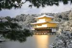The Golden Pavilion 2