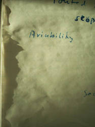 Aviability -or- Leadership ist der Socke des Werts