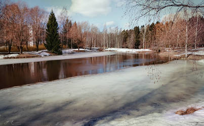 March in Southern Finland  by agevla77