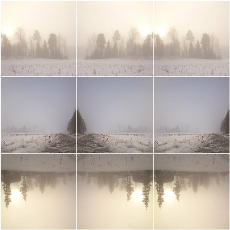 A Foggy Song