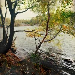 Luukinjarvi, autumn touch